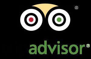 TripAdvisor_stacked_logo_FullColor